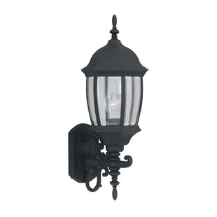 Inexpensive Thornhill Traditional 1-Light Glass Shaded Outdoor Wall lantern By Three Posts