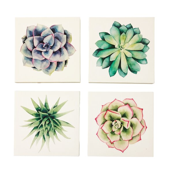 Wrought Studio 'succulents' 4 Piece Print Set On Canvas & Reviews by Wrought Studio