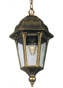 Special Lite Products Astor 1-Light Outdoor Hanging Lantern