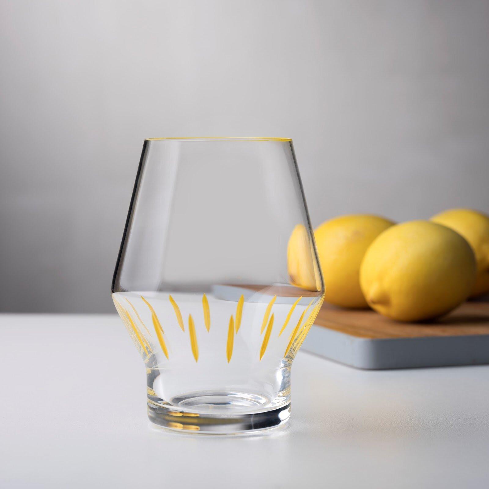 Nude Iris Apfel 12 Oz Crystal Drinking Glass Wayfair