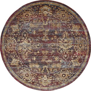 Rennick Red/Beige Area Rug by Darby Home Co