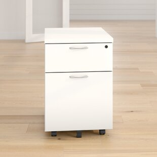 2 Drawer Filing Cabinet By Symple Stuff