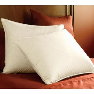 Around Down Standard Pillow ByAlwyn Home
