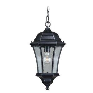 Carnanreagh 1-Light Outdoor Hanging Lantern