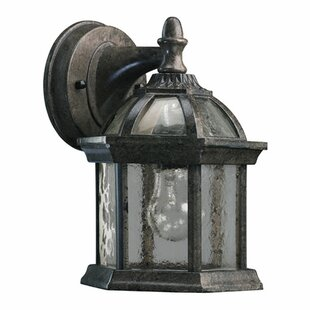 Otterville 1-Light Outdoor Wall Lantern
