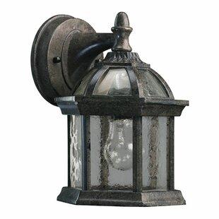 Otterville 1-Light Outdoor Wall Lantern