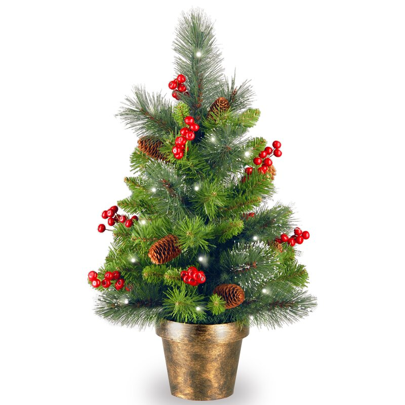 Spruce Small 2' Green Artificial Christmas Tree with 35 White Lights with  LED