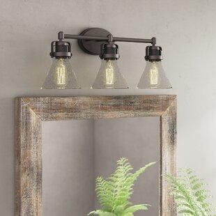 Williston Forge Haefner 3-Light Vanity Light