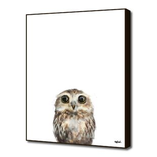 U0027Little Owlu0027 By Amy Hamilton Painting Print