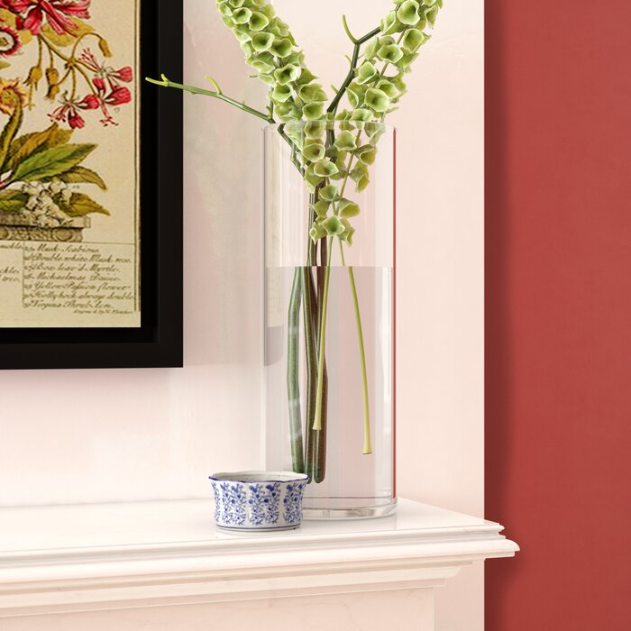 Wayfair & Clear Glass Cylinder Vase