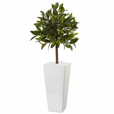 Artificial Sweet Bay Floor Foliage Tree in Ceramic Planter Brayden Studio
