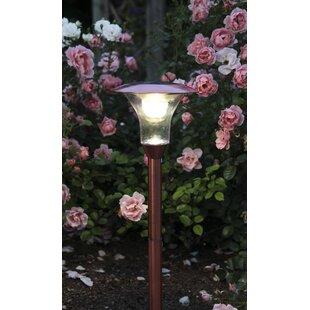Emmanuel 1-Light Pathway Light By Sol 72 Outdoor