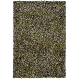 Best Choices Steil Black/White Area Rug By Latitude Run