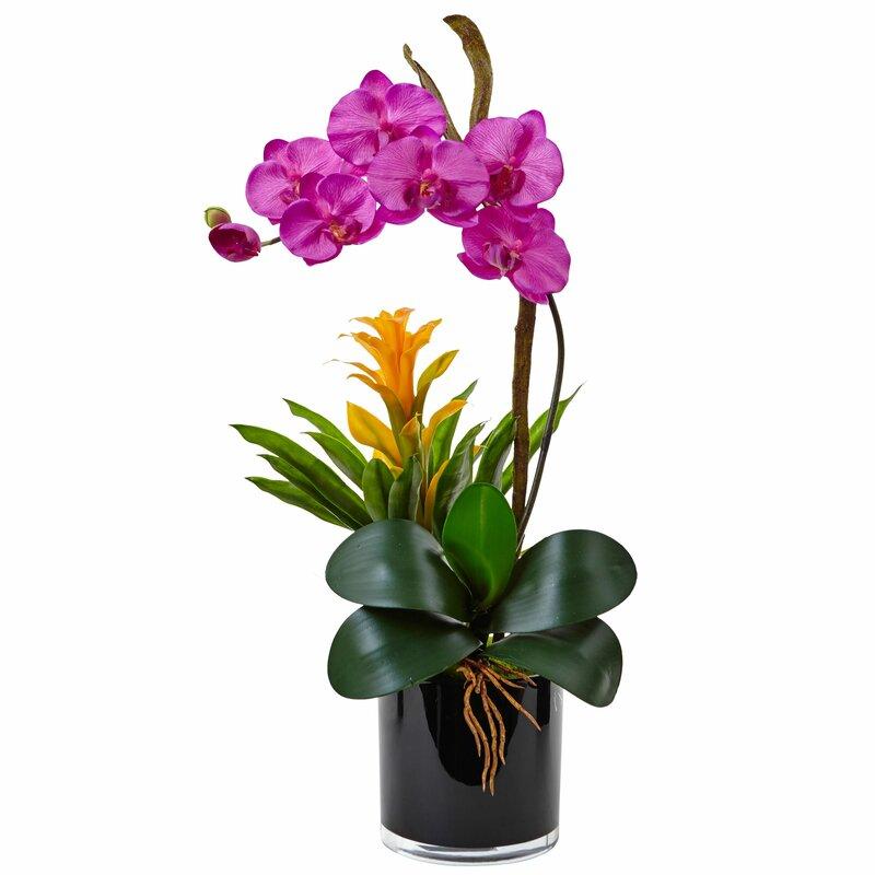 floral home decor orchid floral design wayfair.htm mercer41 silk orchid and bromeliad floral arrangements and  mercer41 silk orchid and bromeliad