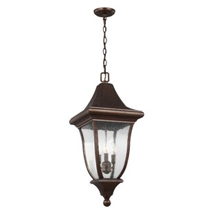 Haubstadt 3-Light Outdoor Hanging Lantern