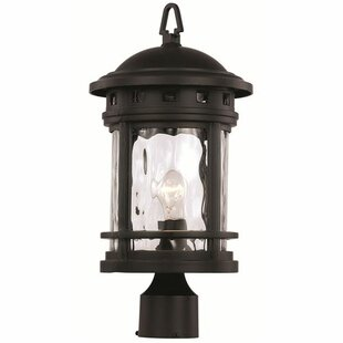 Inexpensive Ashberry 1-Light Lantern Head By Loon Peak