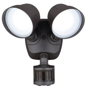 Freeport Park Sweeney LED Dusk to Dawn Outdoor Floodlight with Motion Sensor
