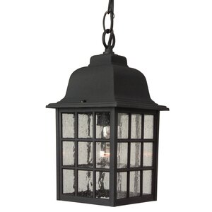 Bentonville 1-Light Outdoor Hanging Lantern