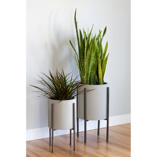 Indoor Planters You\'ll Love | Wayfair