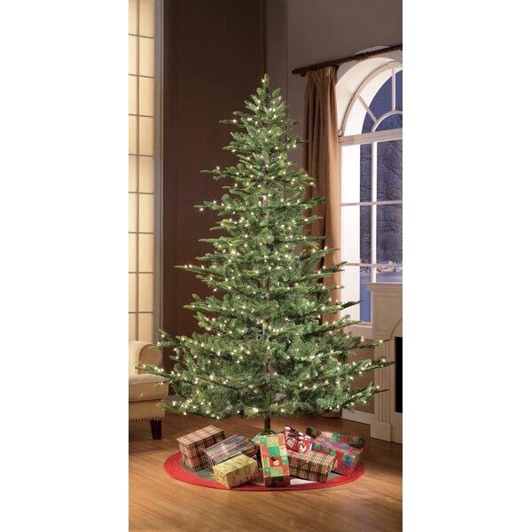 Pre Lit Aspen Green Fir Artificial Christmas Tree With Clear White Lights Reviews Joss Main