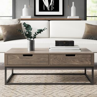 Jerri Coffee Table With Storage by Greyleigh