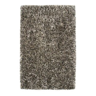 Coupon Romance Shag Polyester Beige/Black Area Rug ByDynamic Rugs