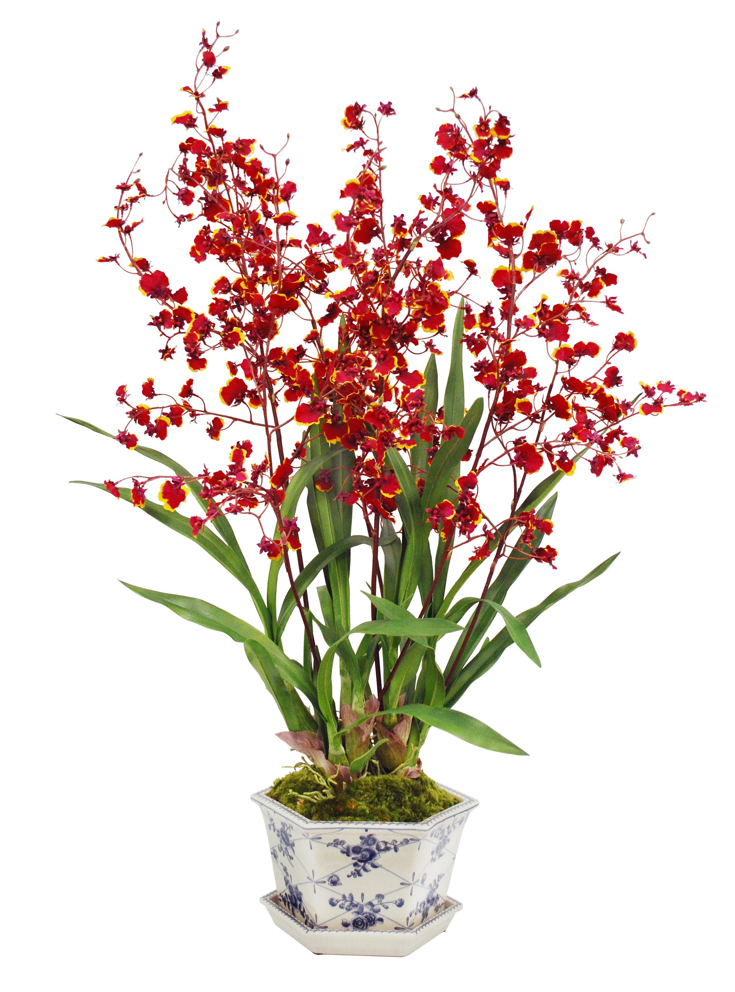 Winward Silks Oncidium Orchid In Cache Rose Trellis Pot Wayfair