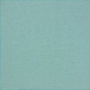 Fackler Turquoise Indoor/Outdoor Area Rug