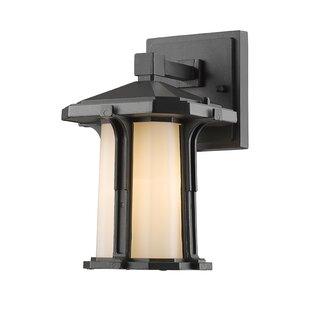 Read Reviews Pelzer 1-Light Outdoor Wall Lantern By Loon Peak