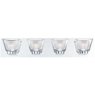 Darby Home Co Seminole Double Glass 4-Light LED Bath Bar