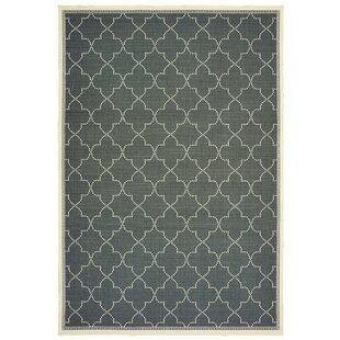 Salerno Simple Lattice Gray Indoor/Outdoor Area Rug
