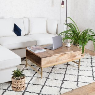 Norris Lift Top Storage Coffee Table by Union Rustic