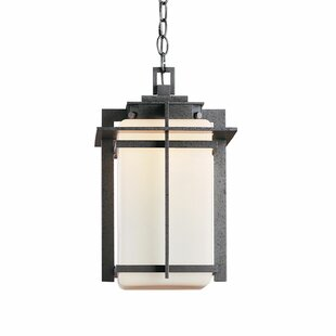 Tourou 1-Light Outdoor Pendant