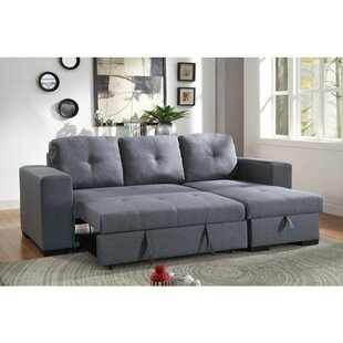 Macaluso Modish Sleeper Sectional