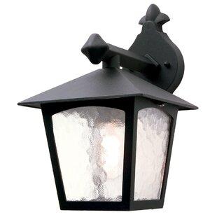 Review Valentina 1 Light Outdoor Wall Lantern