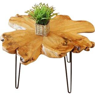 Union Rustic Batotana Unique Coffee Table