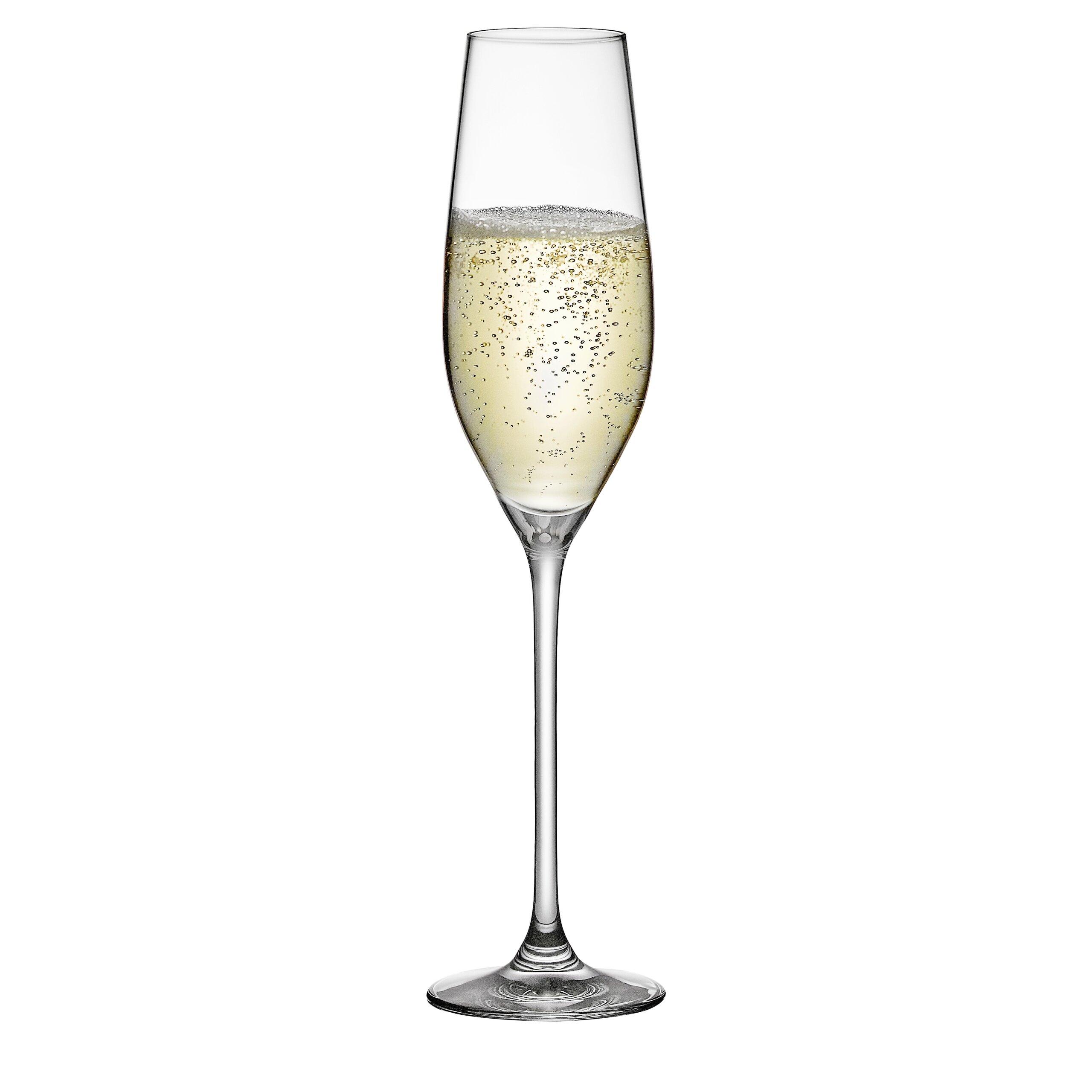 Rona Celebration 21 Champagne 8 Oz Crystal Flute Wayfair