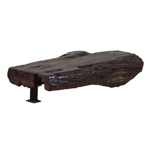 Loon Peak Ralph Root Coffee Table