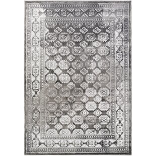 Broadview Gray Area Rug by Alcott Hill