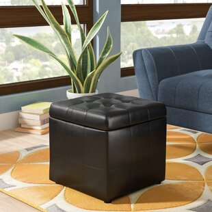 Guide to buy Hogsett Storage Ottoman By Zipcode Design