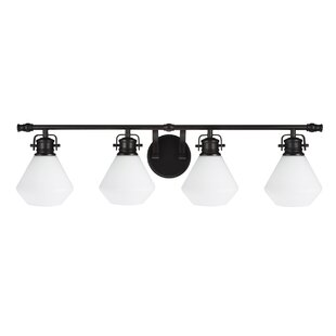 Deems 4-Light Vanity Light by Ivy Bronx