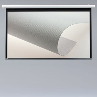 Salara Series M Contrast Gray 100 Manual Projection Screen