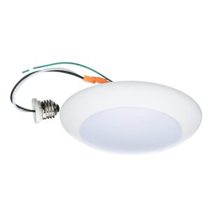 Winston Porter Keisha 1-Light Surface Mount Retrofit Flush Mount
