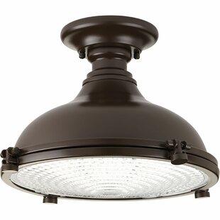 Javi 1-Light LED Semi Flush Mount
