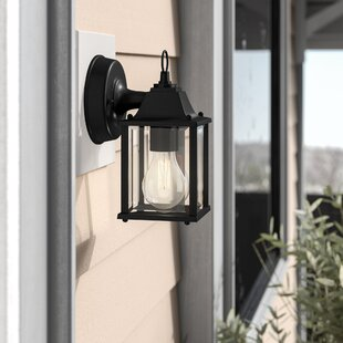 Astoria Grand Caroline 1-Light Outdoor Wall Lantern