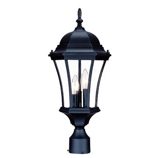 Francesca Lane Outdoor 3-Light Lantern Head by Alcott Hill