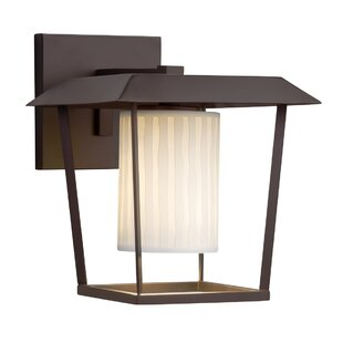 Darrien 1-Light Outdoor Sconce by Brayden Studio