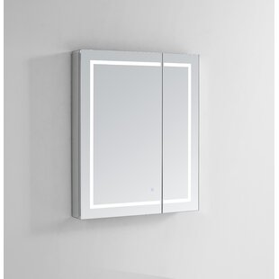 Look for Donnie 36 x 36 Recessed or Surface Mount Frameless Medicine Cabinet with 4 Adjustable Shelves and LED Lighting By Orren Ellis