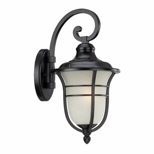 Compare & Buy Berryhill 1-Light Outdoor Wall Lantern By Fleur De Lis Living