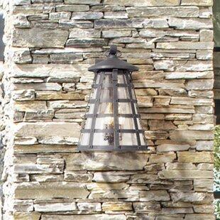 Neelesh 3-Light Outdoor Wall Lantern by 1..